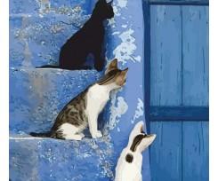 """Набір-стандарт, картина по номерам ROSA START """"Кошенята на сходах"""", 35х45см. (N00013246)"""