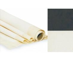 Полотно ґрунтоване ROSA Gallery 200x1000 мм дрібне зерно чорний ґрунт бавовна (GPAcB2010)
