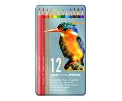Набір кольорових олівців Bruynzeel BIRD, 12шт., (8511M12)