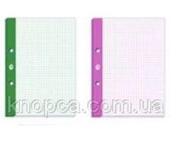 Блок змінний для сегрегатора Interdruk, А4, 50 аркушів, Lux, клітинка, кольорові закладинки(177292)